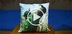 "New Pillow Case Pillow Inner Included 18"" x 18""(One Side)"