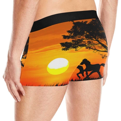 Men's All-Over Print Boxer Briefs (Model L10)