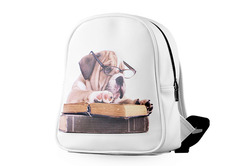 School Bag (Model 1601) (Large)